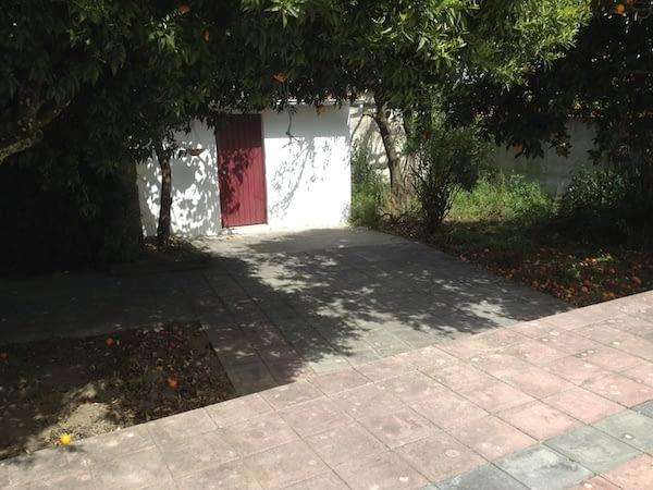 photo 2 (12)
