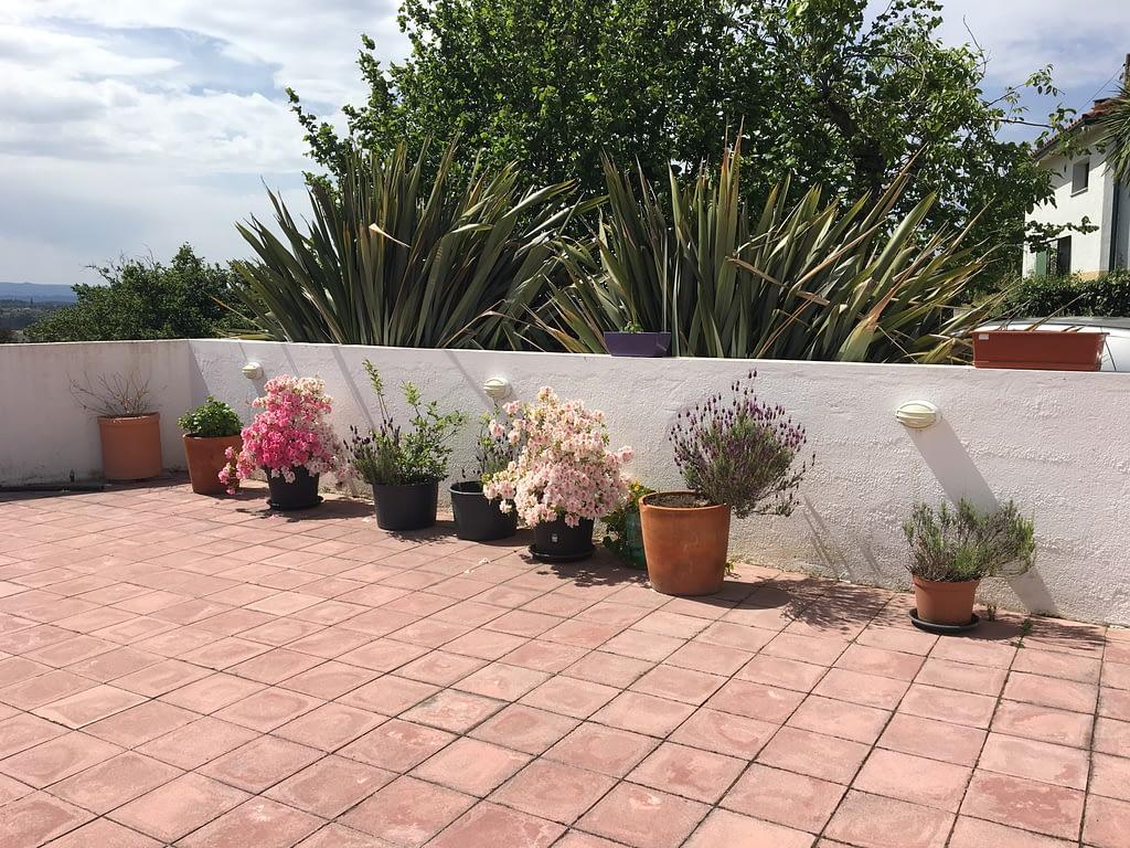 gardening after winter 9