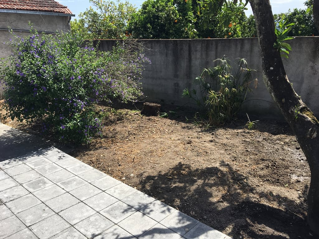 gardening after winter 11