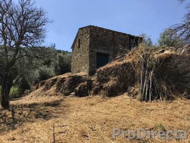 Quinta das Figueirinhas - PD0383